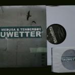 mieze medusa & tenderboy – Tauwetter – Vinyl + CD