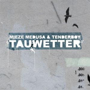 mieze medusa & tenderboy - Tauwetter - CD
